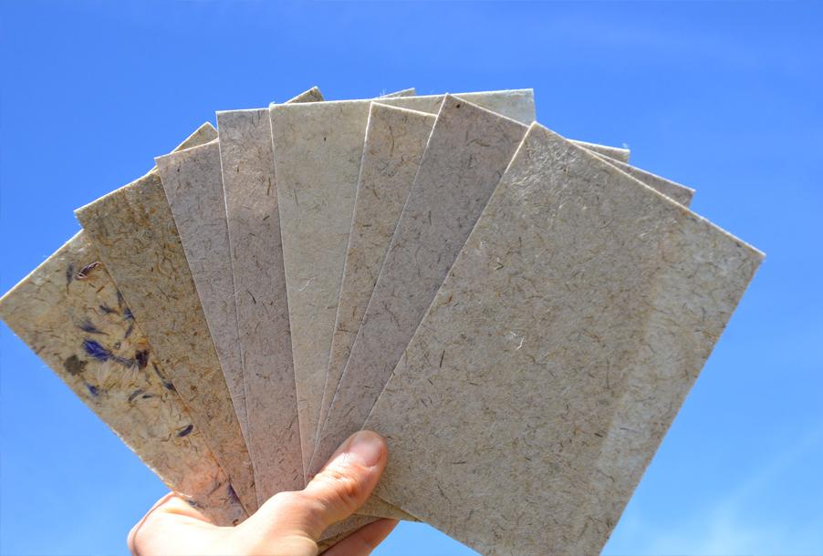 Упаковочная бумага из конопли более экологичная альтернатива не только пластику, но и бумаге, изготовленной из древесины